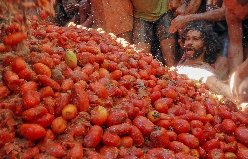 The World's Biggest Food Fight: Pictures