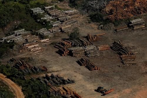 Satellite data shows Amazon deforestation rising under Brazil's Bolsonaro