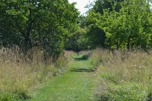 10 Garden Ideas to Steal from Vita Sackville-West at Sissinghurst Castle