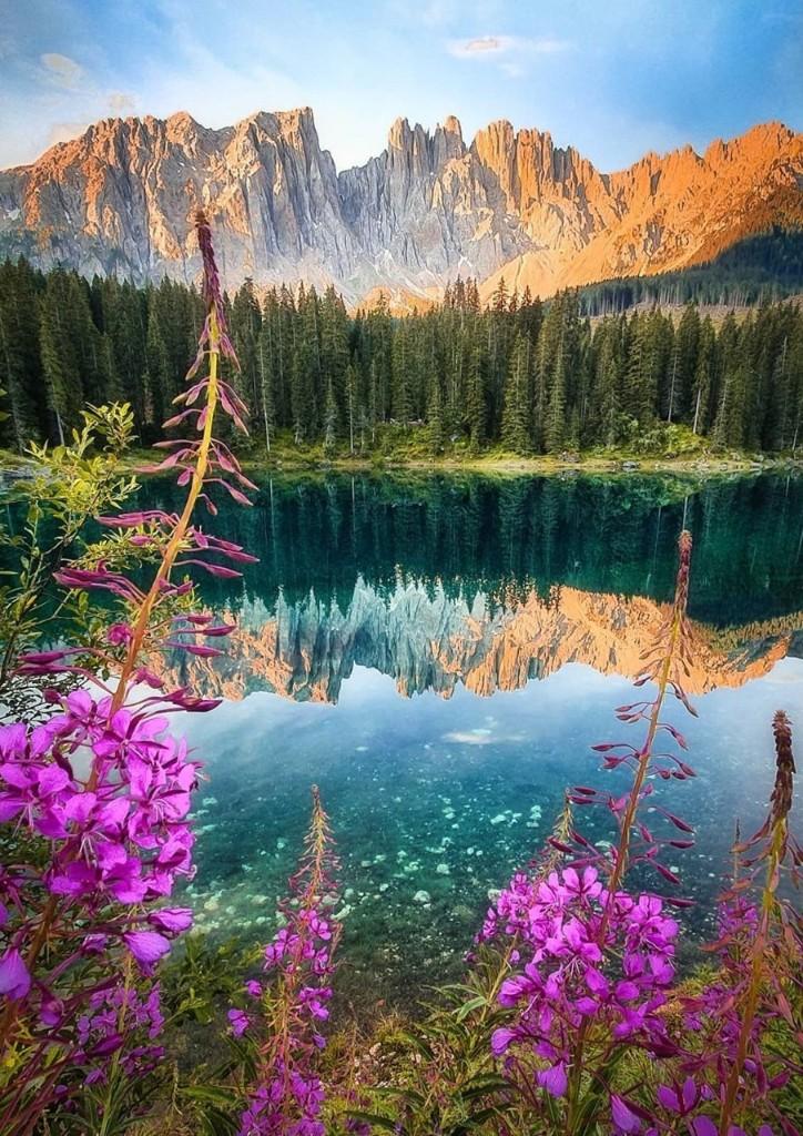 Photographie & la beauté du monde... - cover
