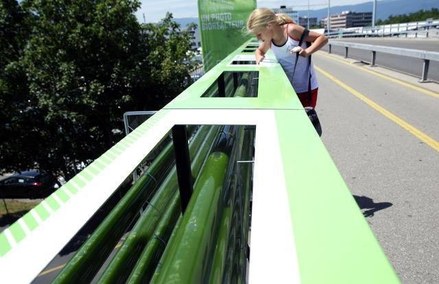 An Algae Farm Designed To Suck Up Highway Pollution