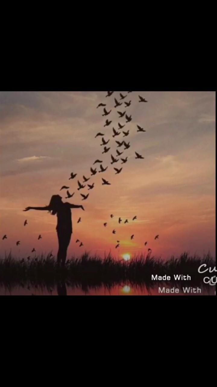 لا تؤاجل لحظه السعاده التي تمر بك عش اللحظه فقد لاتعود كن سعيدا بكل شيء يمر عليك مهما كانت بساطه تلك السعاده