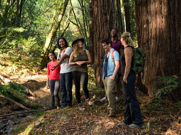 Day 2: Mindful Redwoods Hike