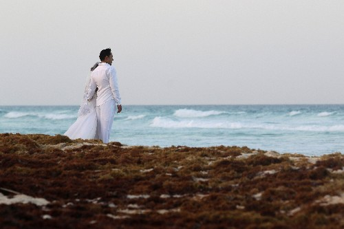 Seaweed washing up on Mexico's top beaches a 'minor' problem - president