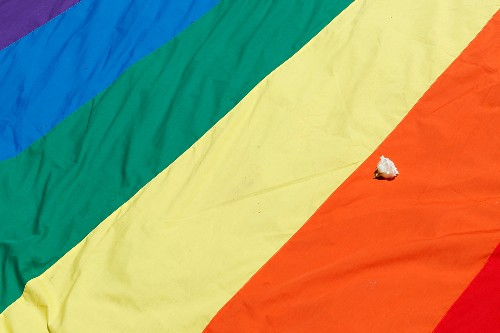 Court revives challenge to Minnesota same-sex marriage video law