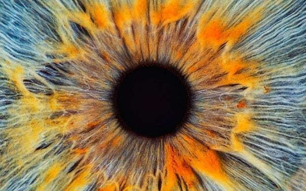 Does the human eye prove that God exists?