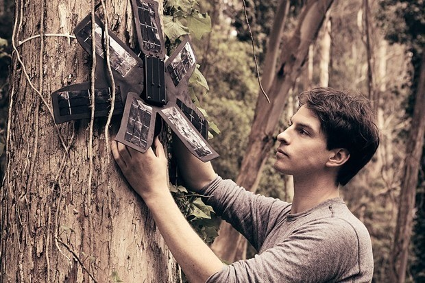 Old mobile phones are helping to save the rainforest
