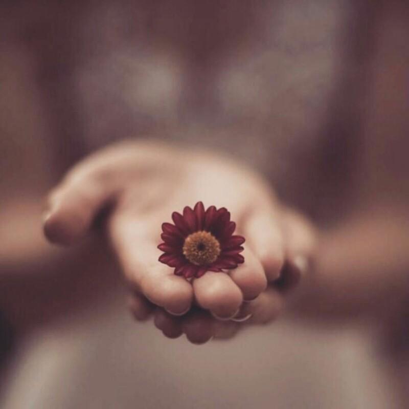 عطاءك الذي تقدمة للآخرين مهما كان حجمه سيكون جواز مرورك لقلوب البشر إذا غلفته بإبتسامة ورششته ببعض الأمل . سمراء سمراء