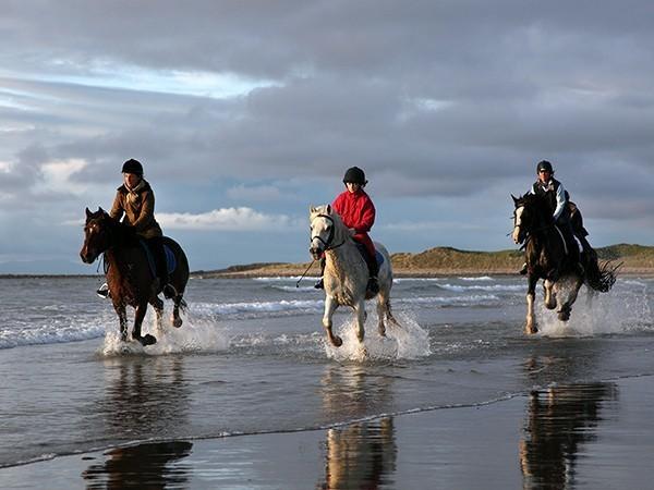 Activities Along Ireland's Wild Atlantic Way