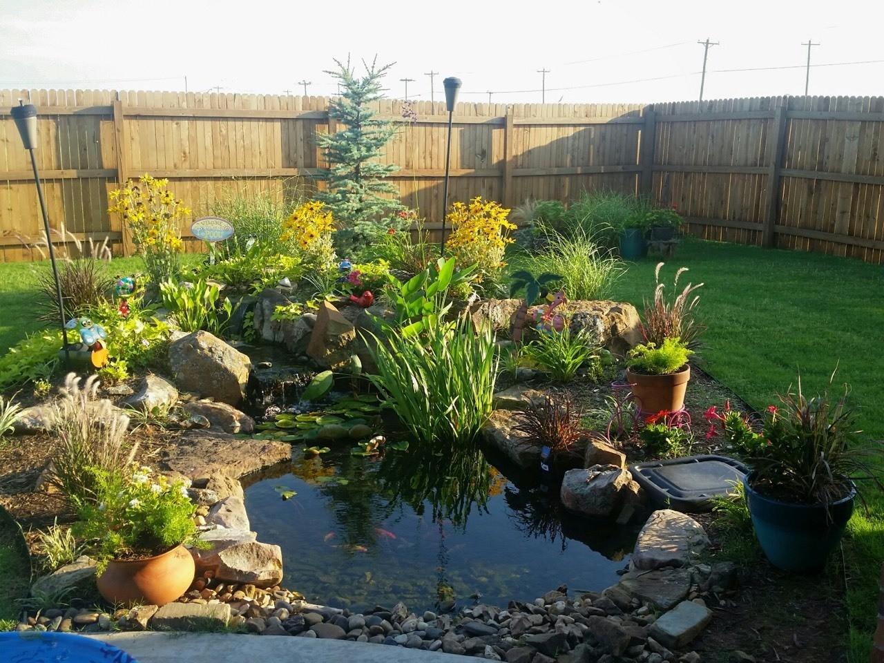 Small Ecosystem Pond