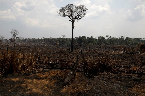 Mercosur trade deal gives EU leeway to pressure Brazil on Amazon fires: Maas