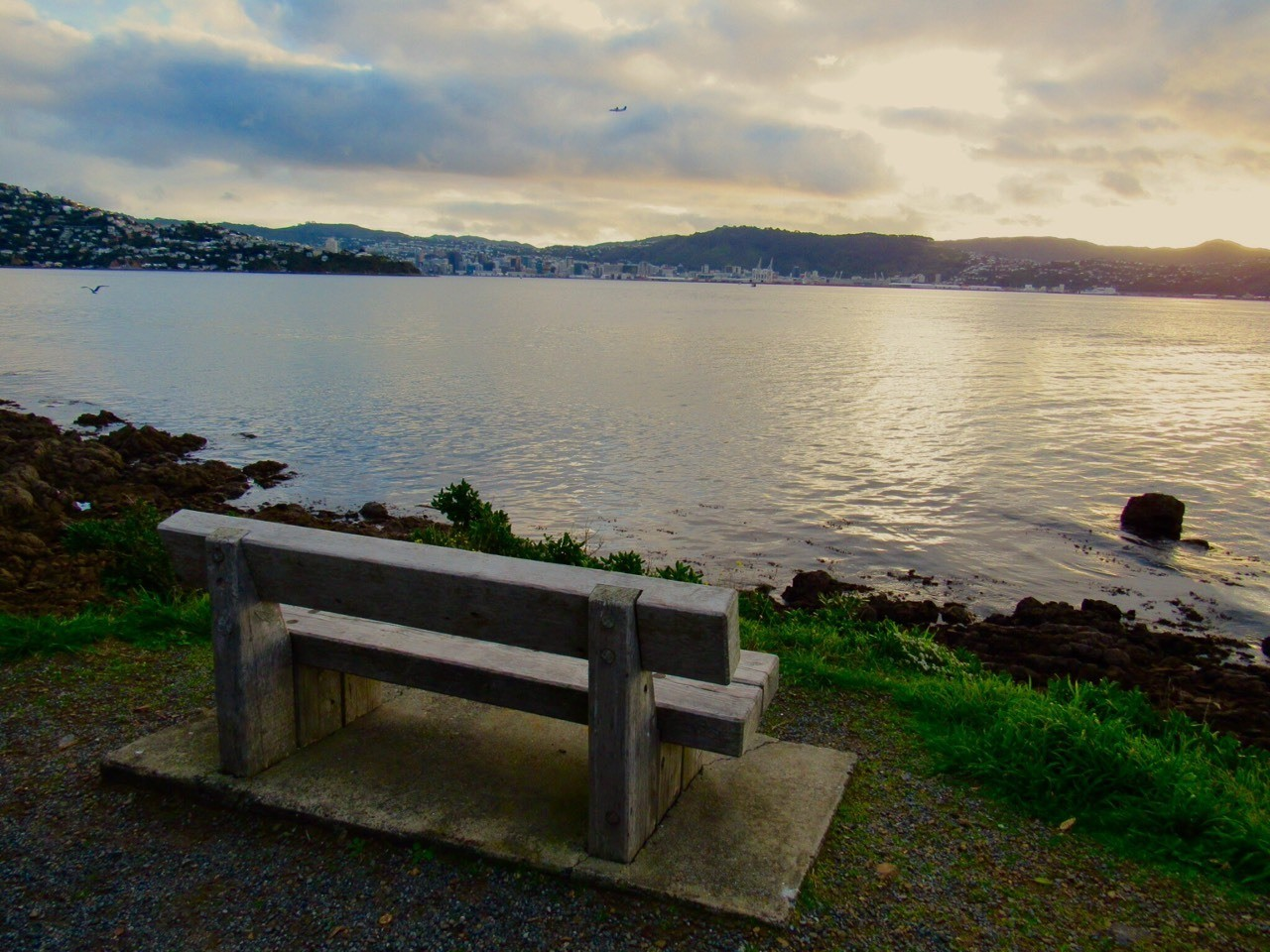 Bench, unused, Wellington City viewed from the Miramar Peninsula, early evening last weekend.