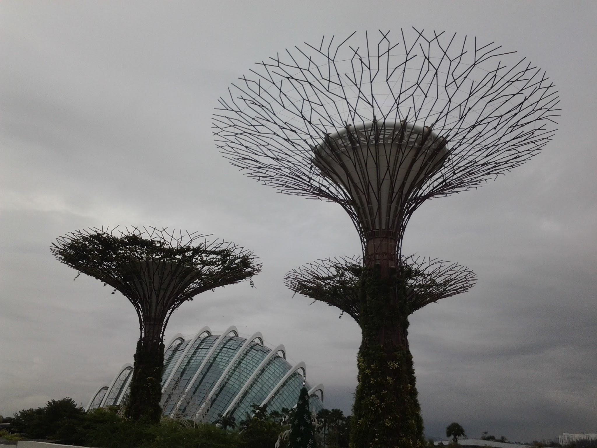 Gardens by the bay, Singapore. Loves this place