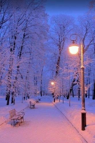 Winter - cover