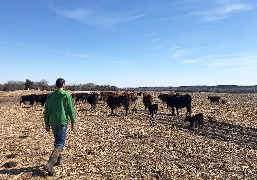 Trump administration announces $16 billion farm aid plan to offset trade war losses