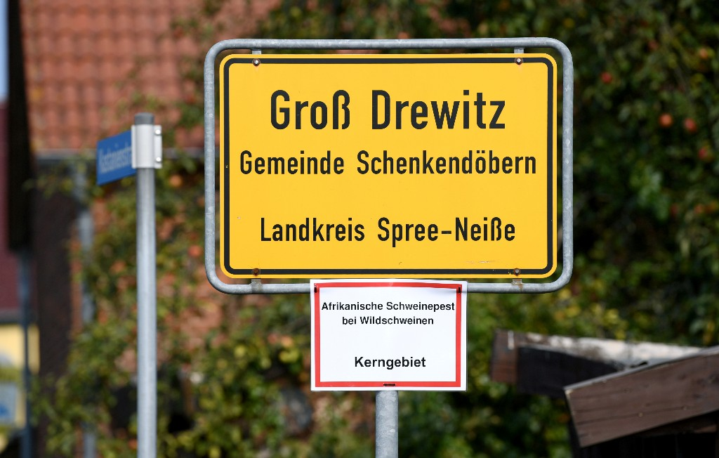Germany confirms two more swine fever cases in wild boar