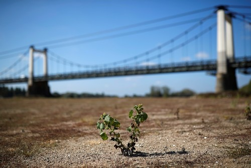 Extreme Drought Ravages France: Pictures