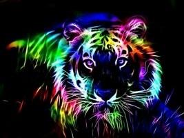 Rainbow Life - cover
