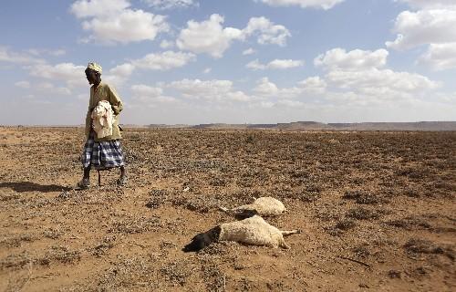 Strong El Nino 'unlikely' this year: U.N. weather agency