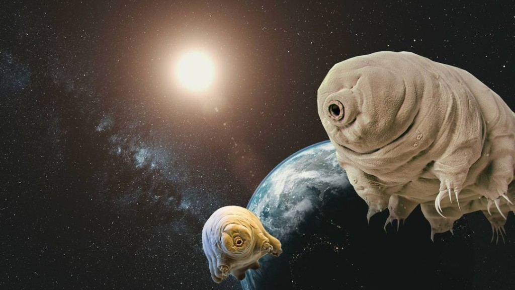 The Most Outrageous Theories About Aliens
