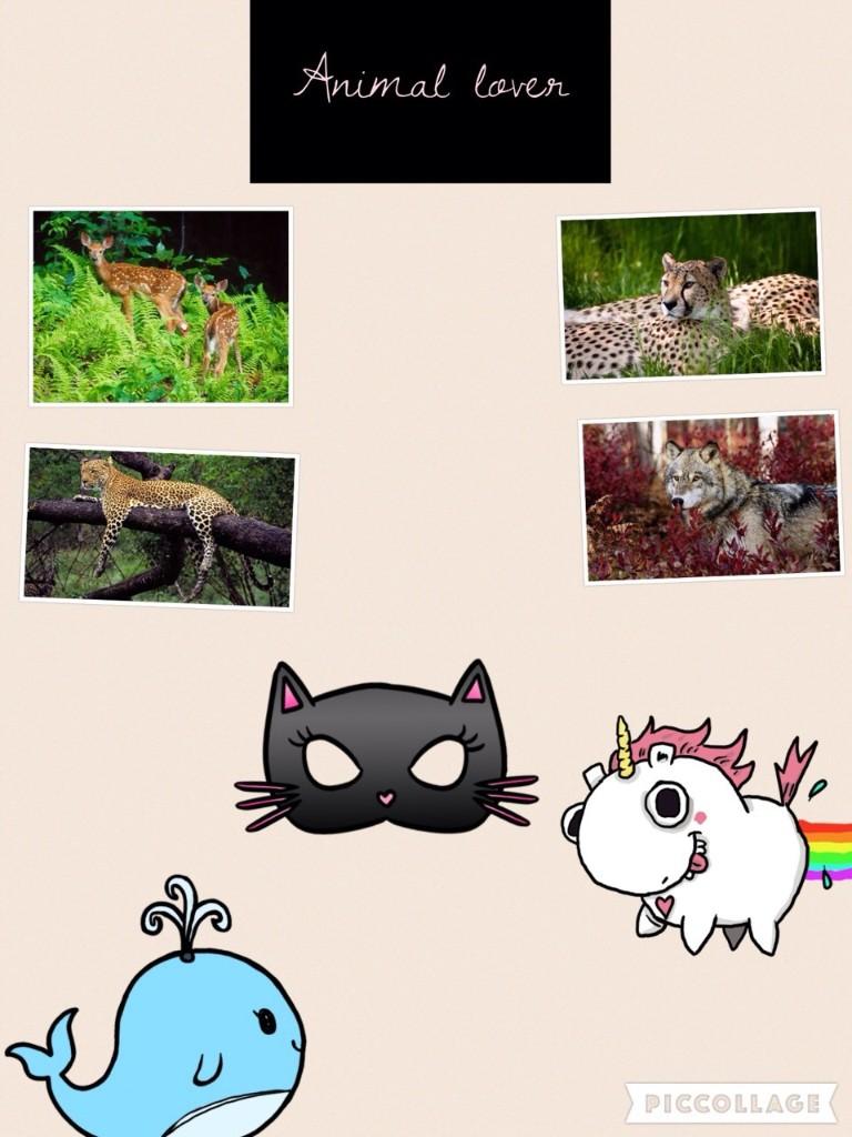 Animals  - cover