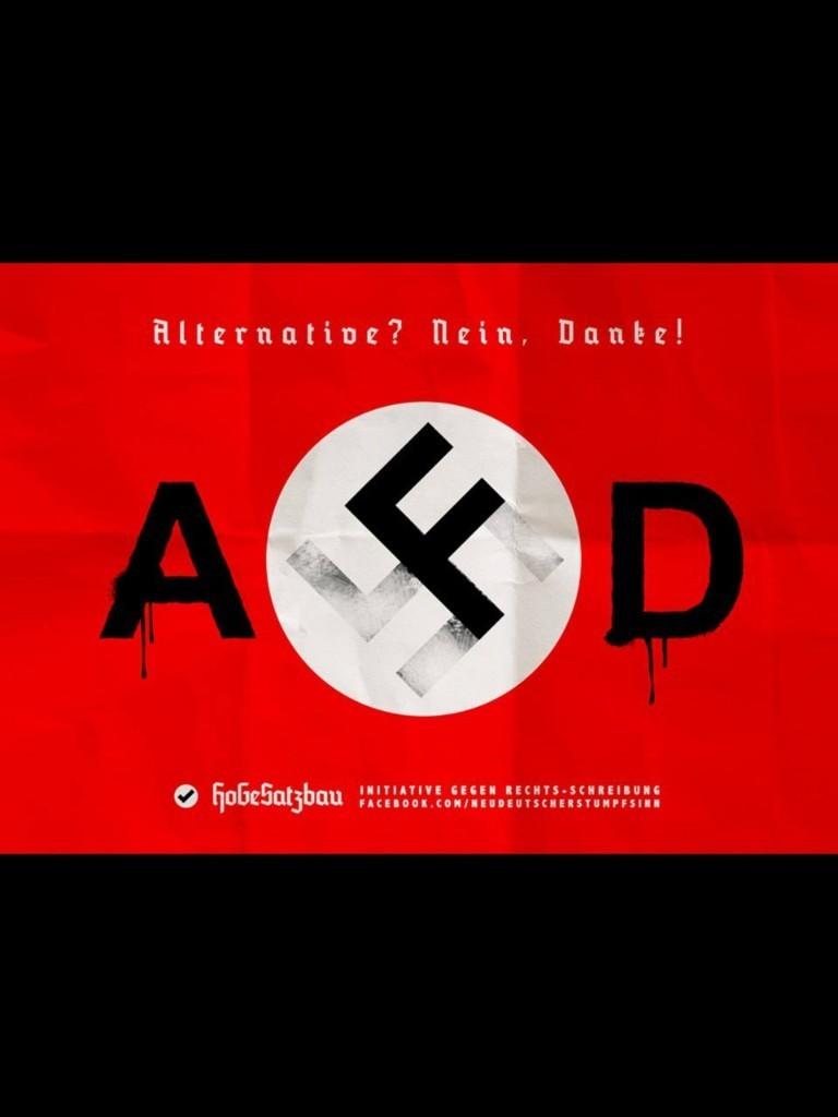 FASCHISMUS: DIE AFD - cover