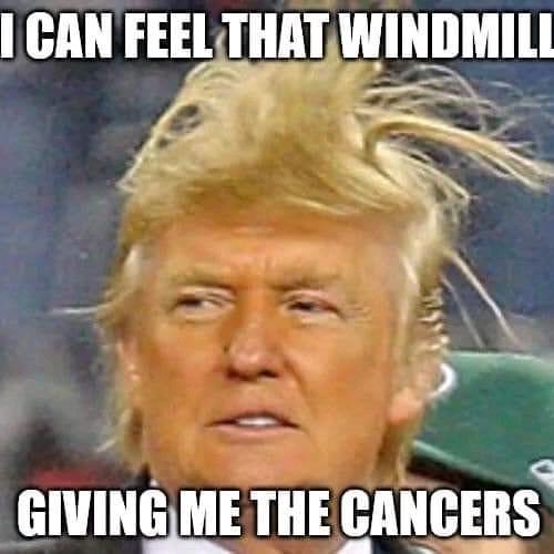 """The Donald""  Donald Trump - Cover"