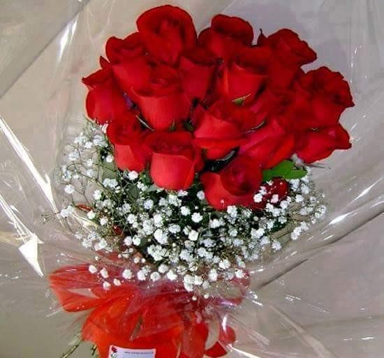 الزهور سبحان الله الوان خلابه وارتياح نفسي،وامل متجدد