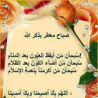 عماد البصراوي - cover