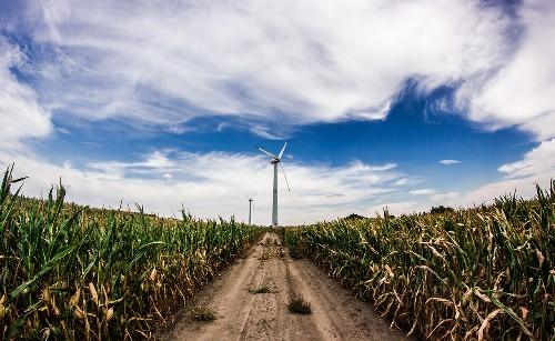 I cambiamenti climatici e il futuro della Terra alla conferenza sul clima COP23