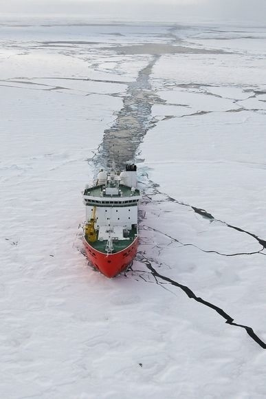 What Happens When Oil Spills in the Arctic?