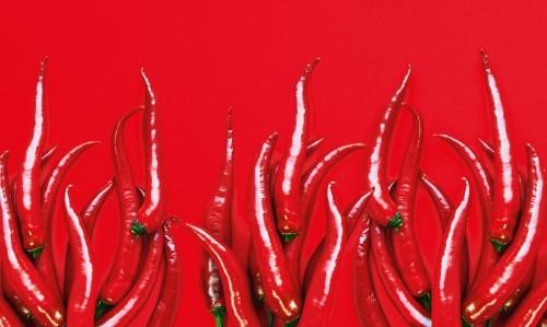 Feel the burn: why do we love chilli?