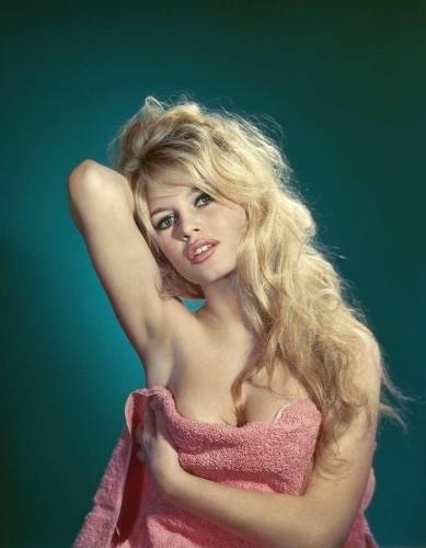 """""""Brigitte"""" - cover"""