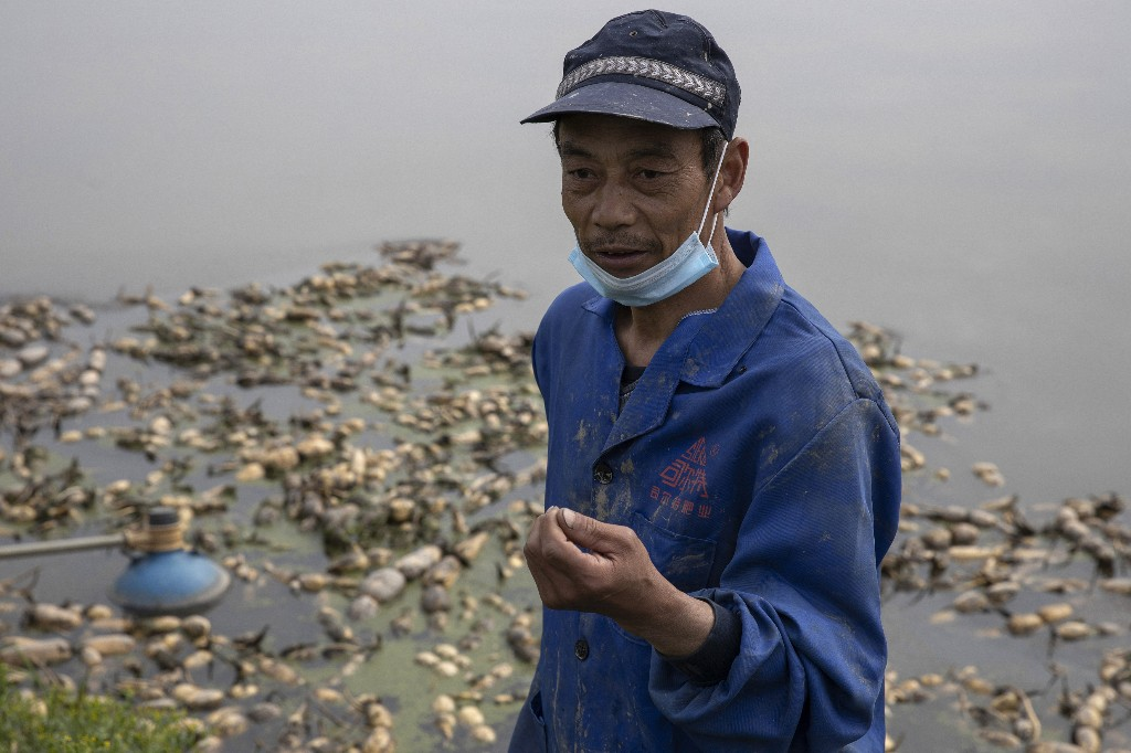 Wuhan farmers struggle as crops wither from travel limits