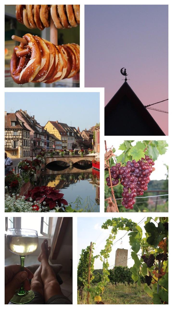 Alsace, France 🇫🇷