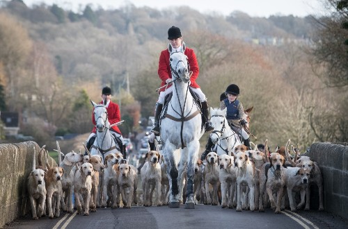 Boxing Day 2016 in Pictures