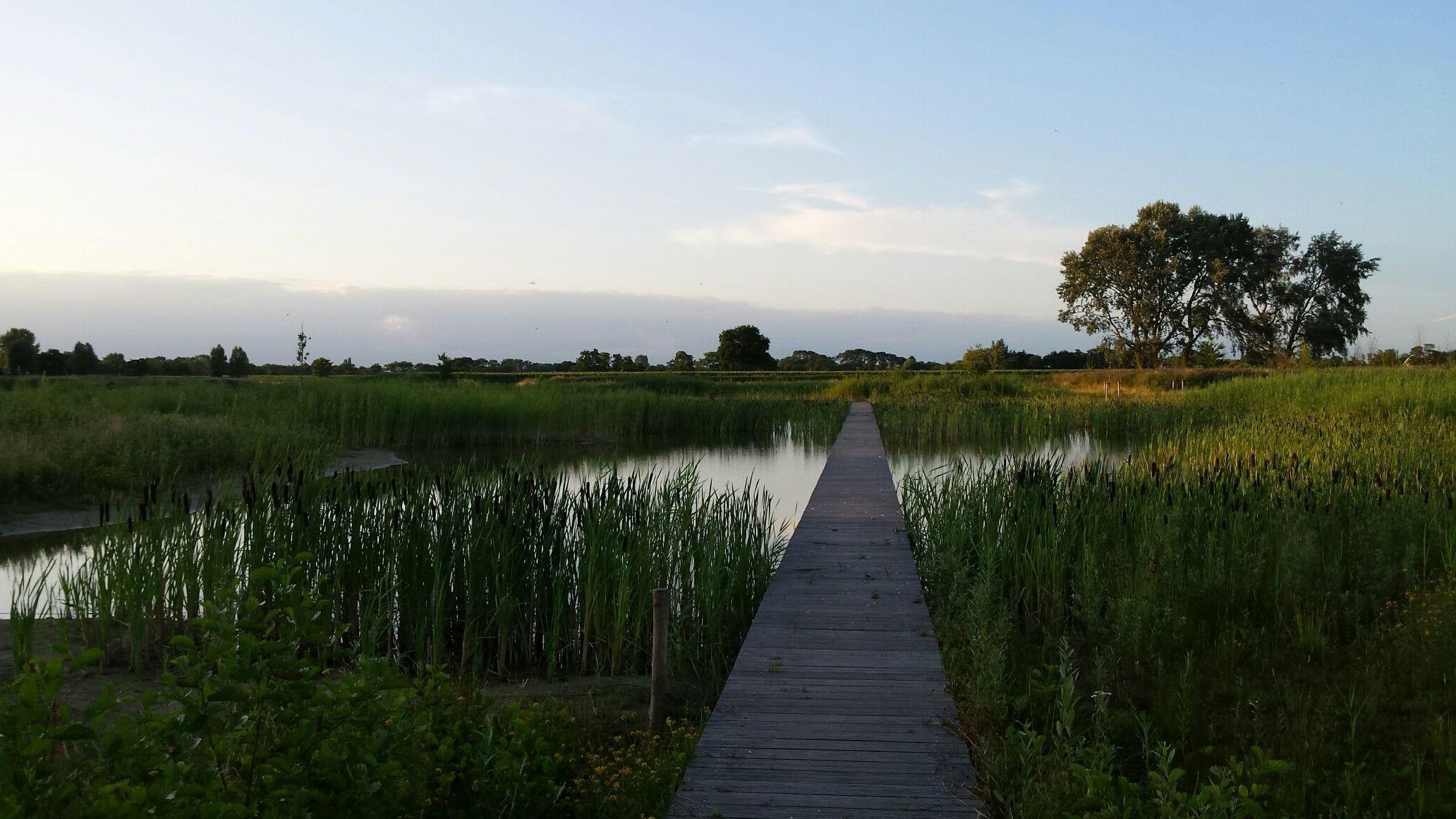 Natural park Veenendaal Nederland