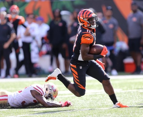 NFL notebook: Bengals WR Ross reportedly out several games