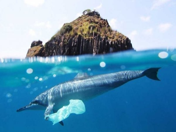 Hawaii is throwing up a Hail Mary to solve America's crippling plastic problem
