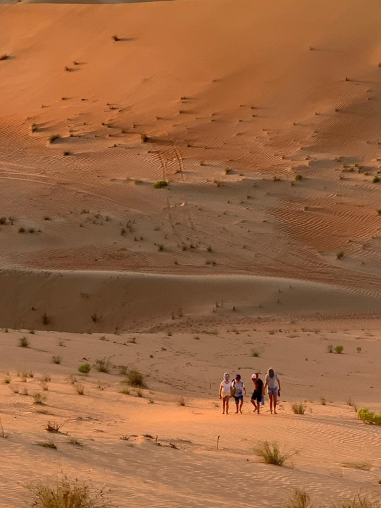 Desert - cover