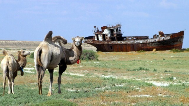 Once-vast Aral Sea dries up to almost nothing