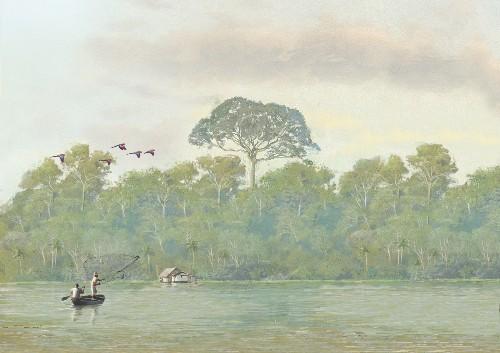 Amazonia Under Threat