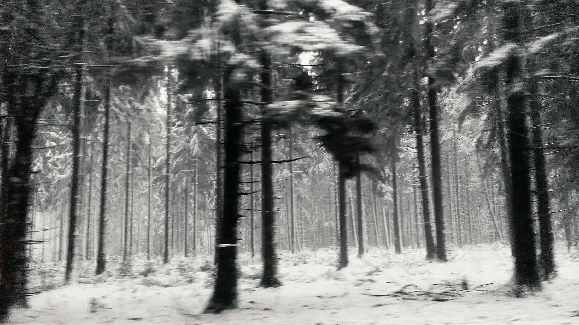 Winter im Vorbeifahren ...