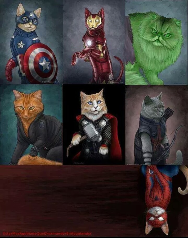 Marvel's cats