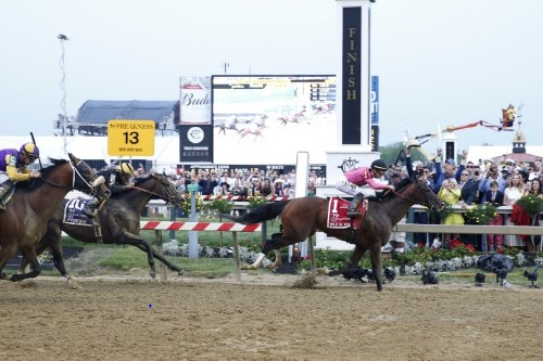 Horse throws rider in Preakness won by War of Will