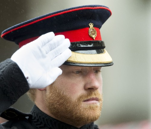 Prince Harry and Prince Philip Visit Field of Remembrance: Pictures