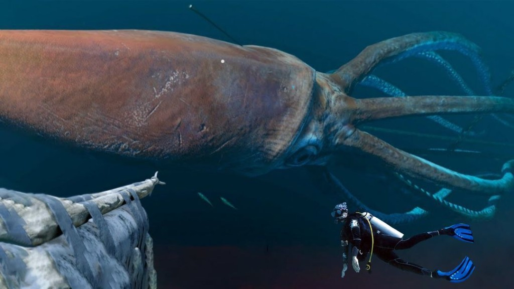 What If You Were Attacked by a Giant Squid?