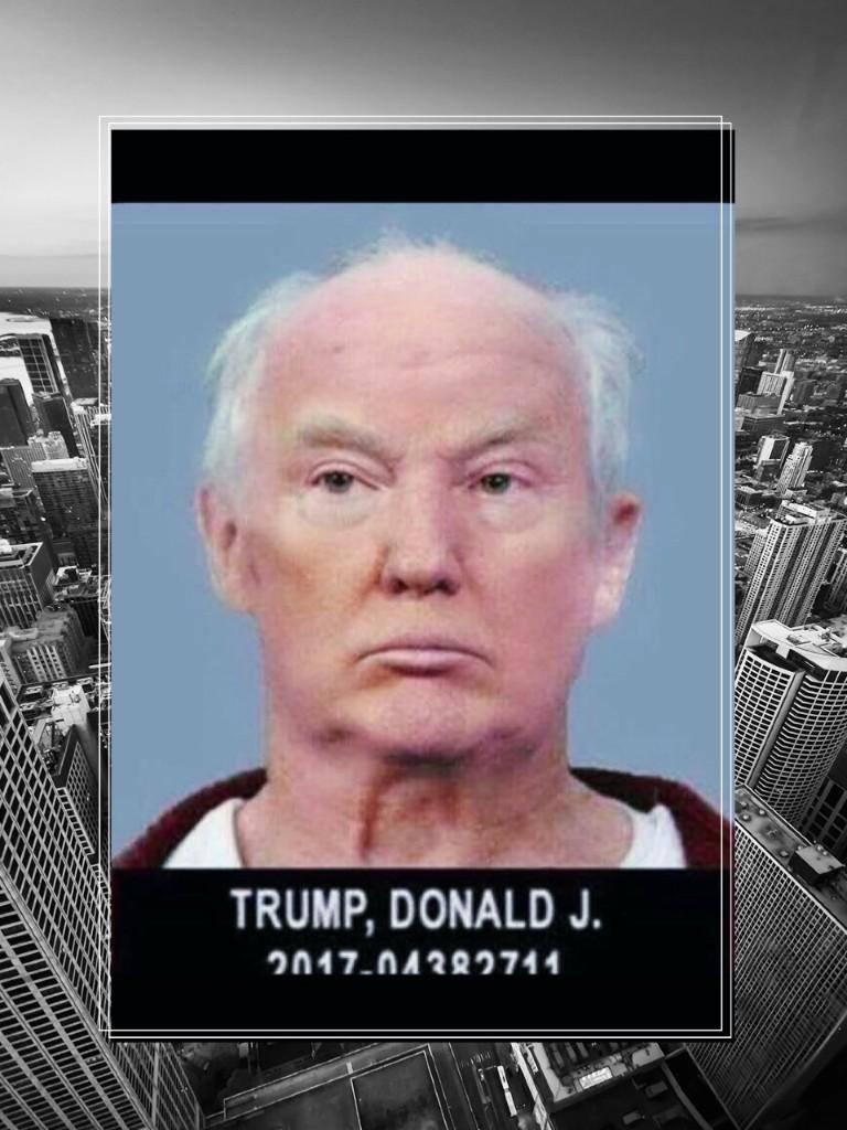 Trump Junk  - cover