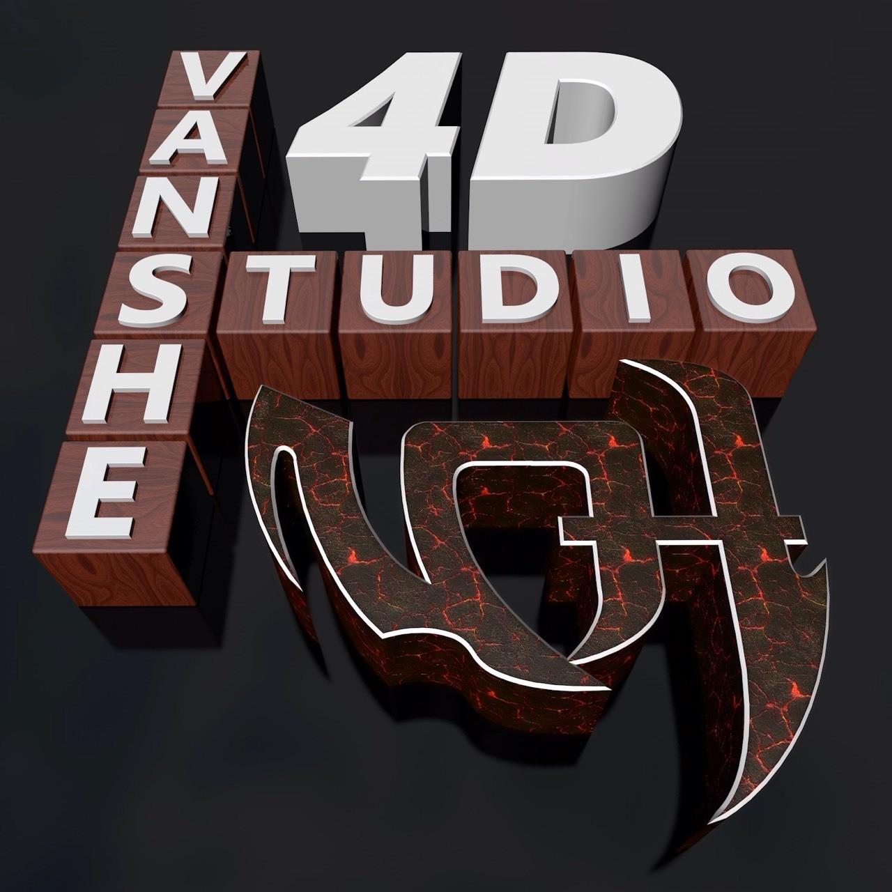 Logo 4D Studio Vanshe