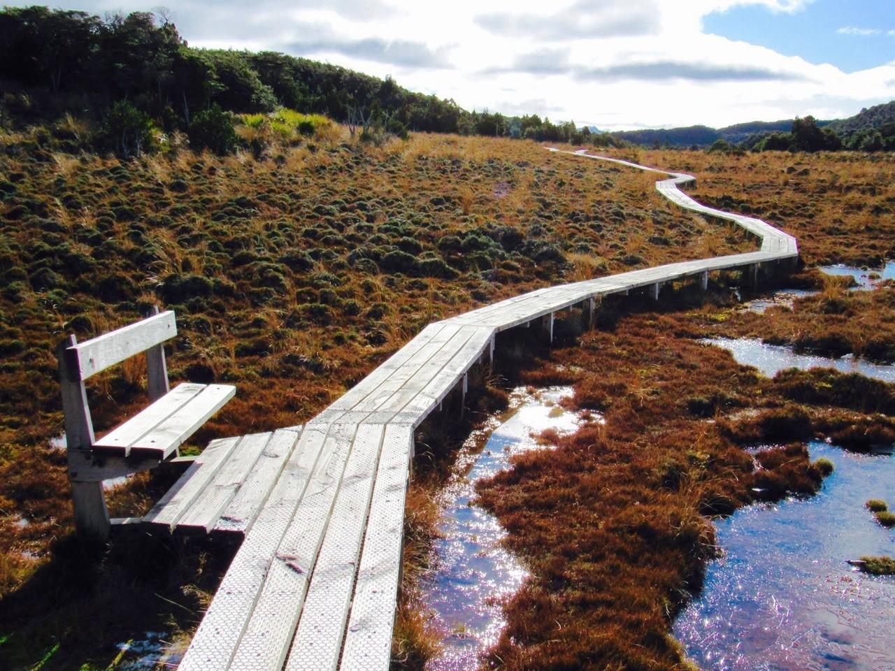 Waitonga Falls Track - Mt Ruapehu walking track, central North island, New Zealand.